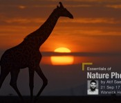 Essentials of Nature Photography